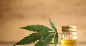 CBD olej zkonope: Oboznámte sa sjeho účinkami!