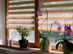Rolety Deň a noc umocňujú dizajn interiéru a raz-dva sa vyčistia